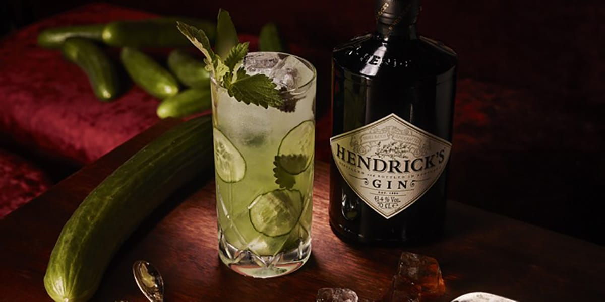 CATNIP AND CUCMBER COCKTAIL HENDRICKS GIN