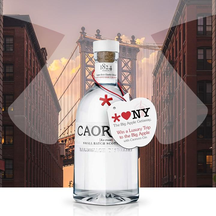 Carounn Gin Neck Tag NYC Square